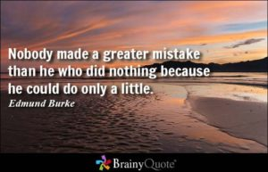 edmund-burke-nobody-made-a-greater-mistake-than-he-who-did-nothing-because-he-could-do-only-a-little